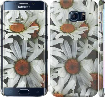 Чехол на Samsung Galaxy S6 Edge G925F Ромашки v2