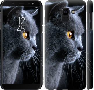 Чехол на Samsung Galaxy J6 2018 Красивый кот