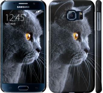 Чехол на Samsung Galaxy S6 G920 Красивый кот