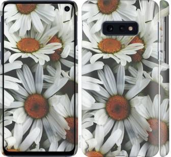 Чехол на Samsung Galaxy S10e Ромашки v2