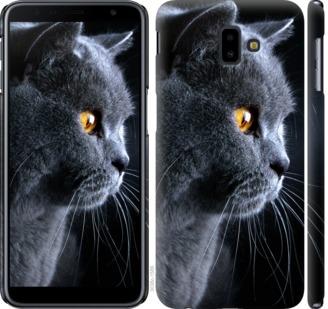 Чехол на Samsung Galaxy J6 Plus 2018 Красивый кот