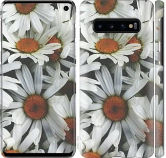 Чехол на Samsung Galaxy S10 Ромашки v2