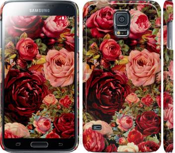 Чехол на Samsung Galaxy S5 g900h Цветущие розы