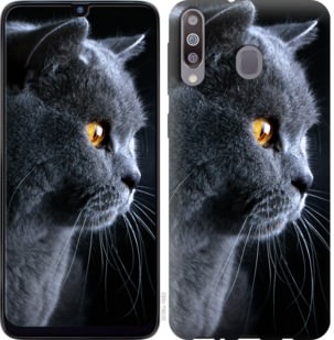 Чехол на Samsung Galaxy M30 Красивый кот