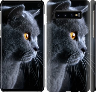 Чехол на Samsung Galaxy S10 Красивый кот