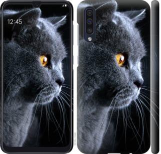 Чехол на Samsung Galaxy A50 2019 A505F Красивый кот