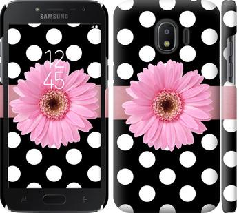 Чехол на Samsung Galaxy J2 2018 Горошек 2
