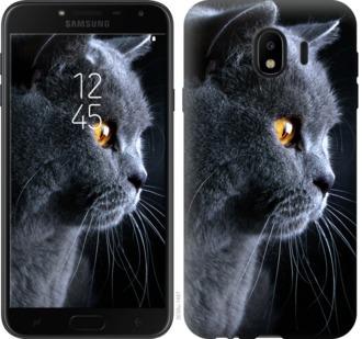 Чехол на Samsung Galaxy J4 2018 Красивый кот