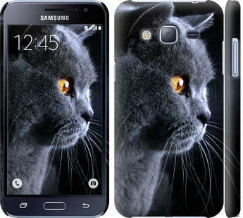 Чехол на Samsung Galaxy J3 Duos (2016) J320H Красивый кот
