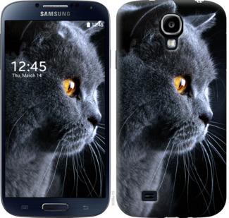 Чехол на Samsung Galaxy S4 i9500 Красивый кот