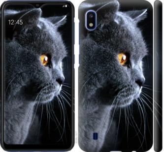 Чехол на Samsung Galaxy A10 2019 A105F Красивый кот