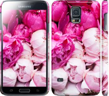 Чехол на Samsung Galaxy S5 g900h Розовые пионы
