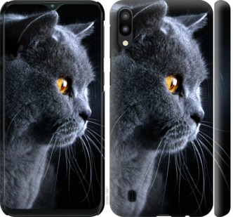 Чехол на Samsung Galaxy M10 Красивый кот