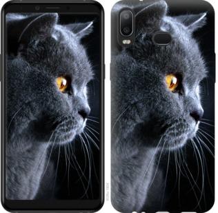 Чехол на Samsung Galaxy A6s Красивый кот