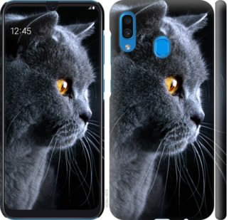 Чехол на Samsung Galaxy A20 2019 A205F Красивый кот
