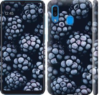 Чехол на Samsung Galaxy A20 2019 A205F Морозная ежевика