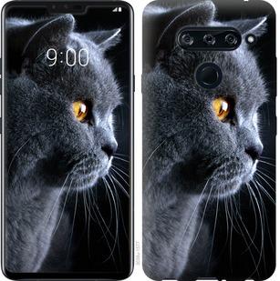 Чехол на Sony Xperia 10 I4113 Красивый кот