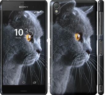 Чехол на Sony Xperia Z3 D6603 Красивый кот