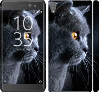 Чехол на Sony Xperia XA Ultra Dual F3212 Красивый кот