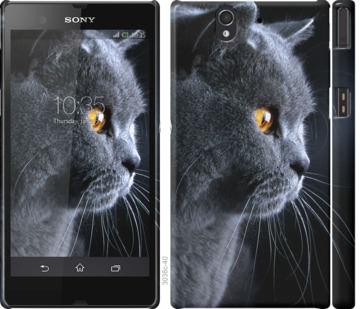 Чехол на Sony Xperia Z C6602 Красивый кот