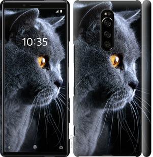 Чехол на Sony Xperia 1 J9110 Красивый кот