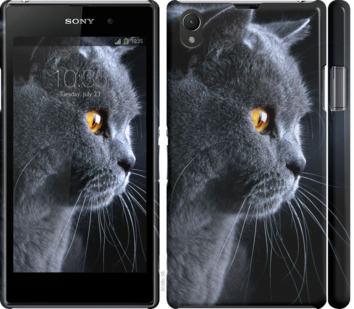 Чехол на Sony Xperia Z1 C6902 Красивый кот