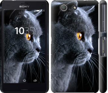 Чехол на Sony Xperia Z3 Compact D5803 Красивый кот