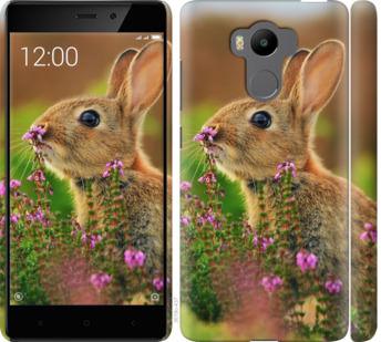 Чехол на Xiaomi Redmi 4 pro Кролик и цветы