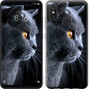 Чехол на Xiaomi Mi8 Красивый кот