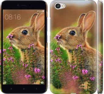 Чехол на Xiaomi Redmi Note 5A Кролик и цветы