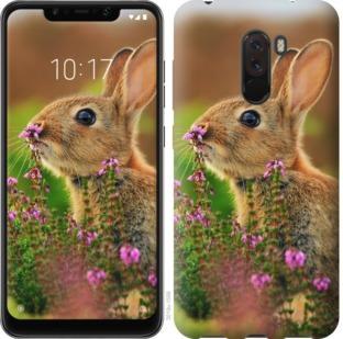 Чехол на Xiaomi Pocophone F1 Кролик и цветы