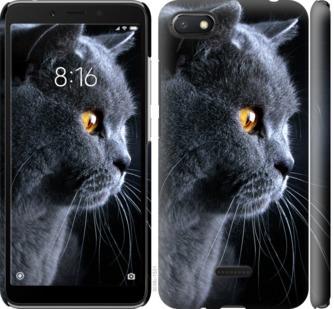 Чехол на Xiaomi Redmi 6A Красивый кот