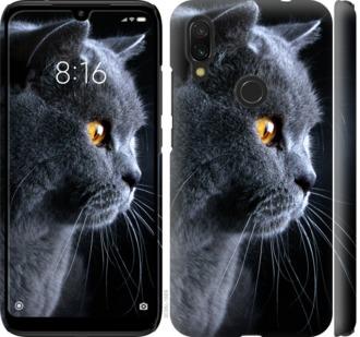 Чехол на Xiaomi Redmi 7 Красивый кот