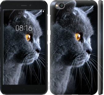 Чехол на Xiaomi Redmi Go Красивый кот