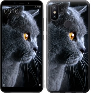 Чехол на Xiaomi Mi A2 Красивый кот