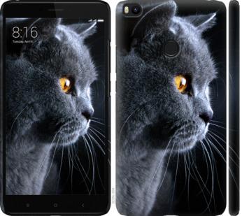 Чехол на Xiaomi Mi Max 2 Красивый кот