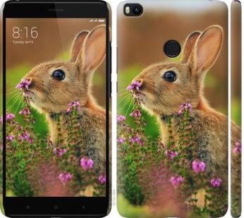 Чехол на Xiaomi Mi Max 2 Кролик и цветы