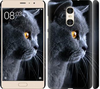 Чехол на Xiaomi Redmi Pro Красивый кот
