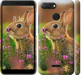 Чехол на Xiaomi Redmi 6 Кролик и цветы
