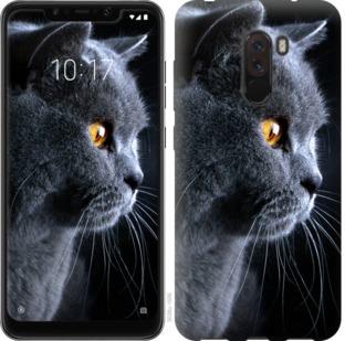Чехол на Xiaomi Pocophone F1 Красивый кот