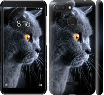 Чехол на Xiaomi Redmi 6 Красивый кот