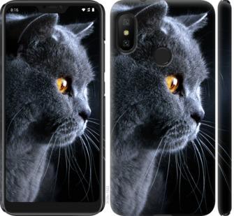 Чехол на Xiaomi Redmi 6 Pro Красивый кот