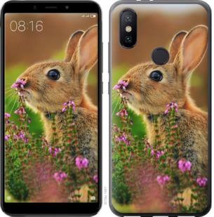 Чехол на Xiaomi Mi A2 Кролик и цветы