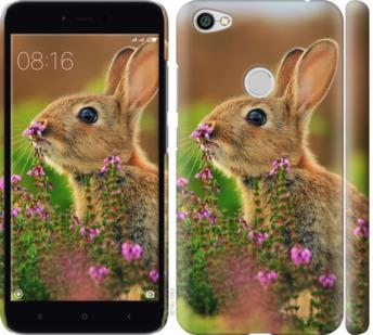 Чехол на Xiaomi Redmi Note 5A Prime Кролик и цветы