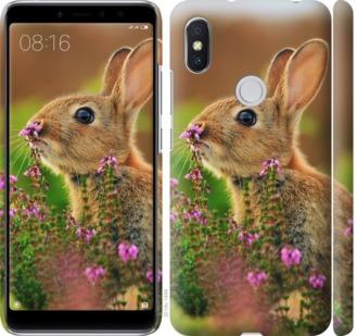 Чехол на Xiaomi Redmi S2 Кролик и цветы