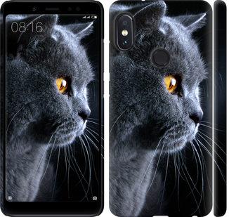 Чехол на Xiaomi Redmi Note 5 Pro Красивый кот